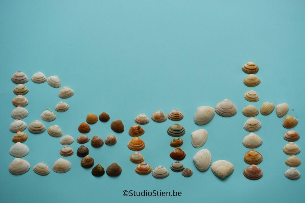 schelpen blauw beach text