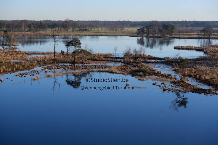 Landscape Vennengebied Turnhout