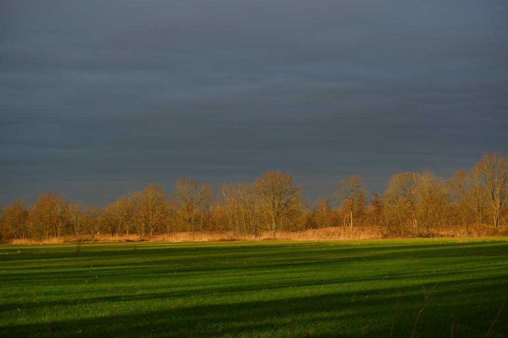 zonsopgang water, reflecties wolken natuurfotografie landschapsfotografie fotografietips