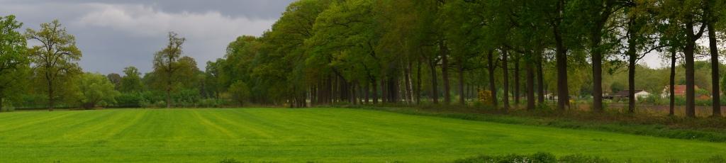 Wortel Kolonie velden panorama België wandelen fotografie