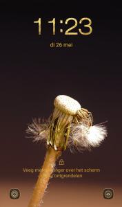 verticale foto's fotografie fotografietips smartphonefotografie