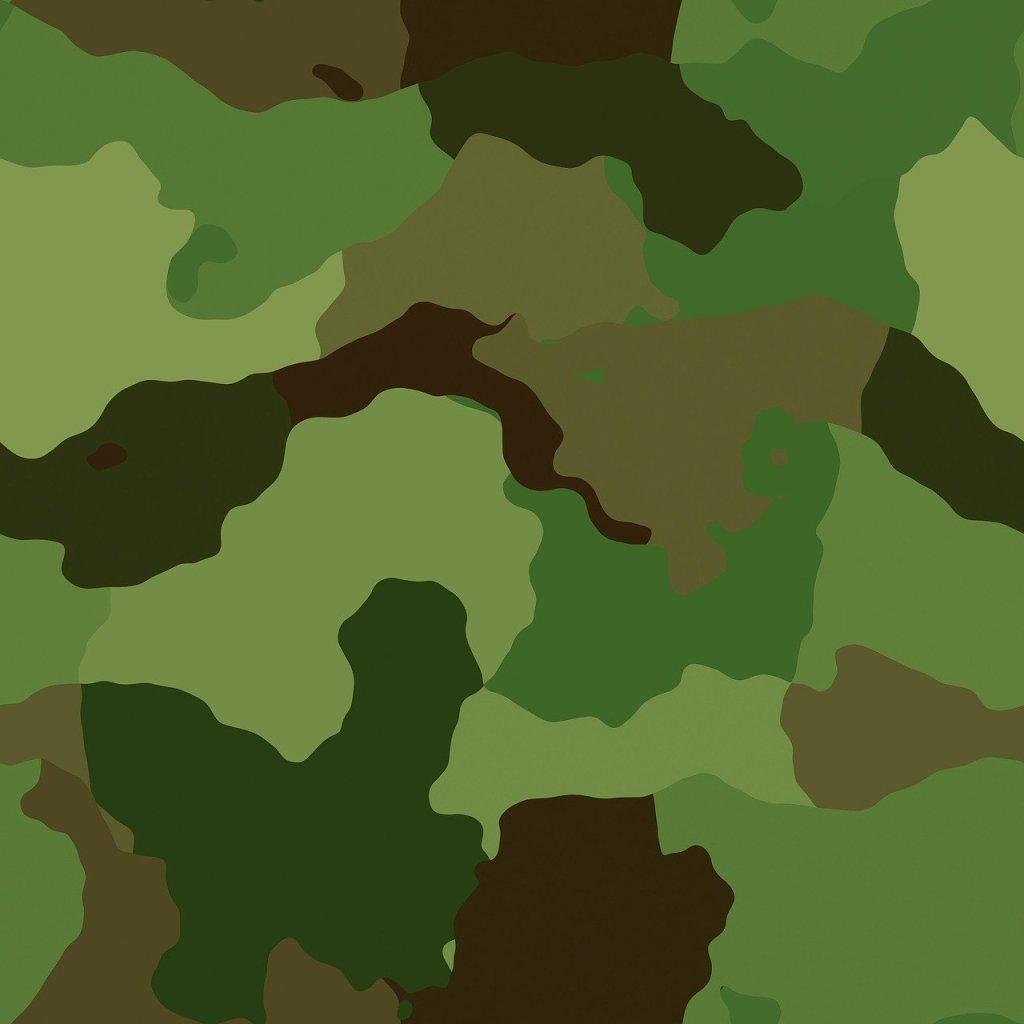 camouflage camoufleren natuurfotografie camouflagepatroon